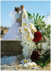 Фотограф. Свадебный фотограф