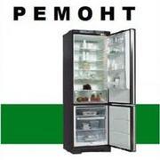 Ремонт бытовых холодильников и торгового  холодильного оборудования т:920-720