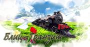 БЛИЦ- ТРАНЗИТ транспортно- экспедиторская компания