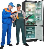 Ремонт любых холодильников и холодильного оборудования